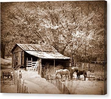 Farm And Barn Canvas Print by Marty Koch
