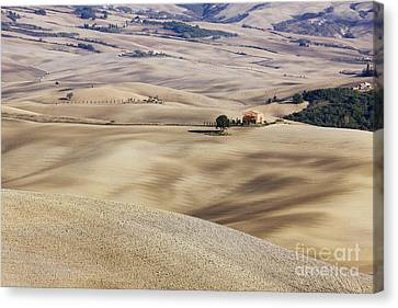 Farm Fields Canvas Print by Jeremy Woodhouse