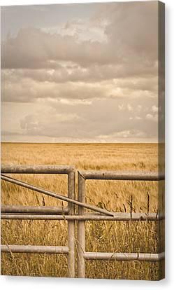 Farm Gate Canvas Print by Tom Gowanlock