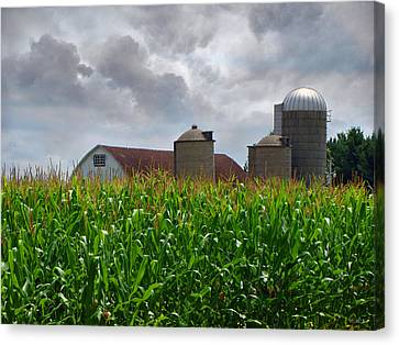 Farm Landscape Canvas Print by Ms Judi