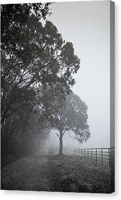 Farm Road Canvas Print by 2BDesign