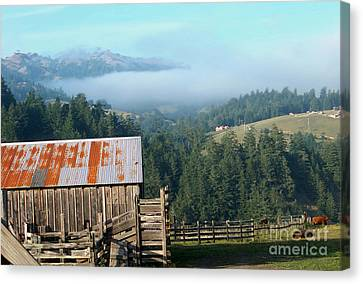 Farm View  Canvas Print by The Kepharts