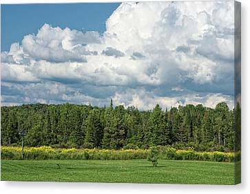 Farmland, Forests And Clouds On Sunny Day Canvas Print by Denise Taylor