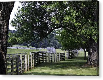 Farmland Shade Appomattox Virginia Canvas Print by Teresa Mucha