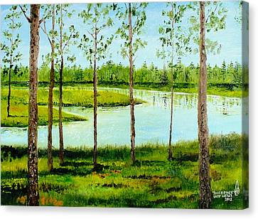 Faver Dykes Canvas Print