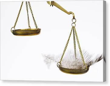 Feather On Weighing Scales Canvas Print by Sami Sarkis