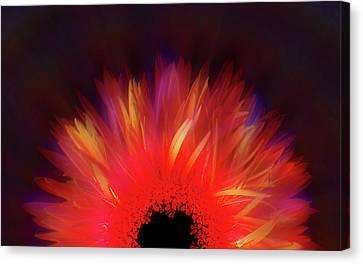 Feathered Floral Canvas Print by Li   van Saathoff