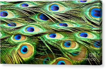 Feathery Waves Canvas Print
