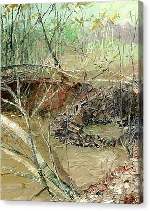 February Stream Canvas Print by Sergey Zhiboedov