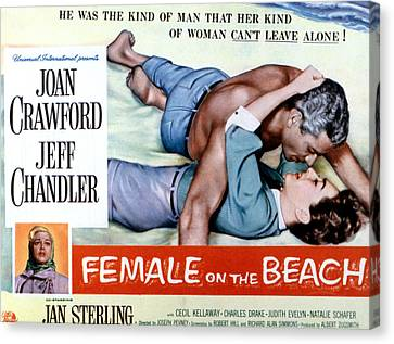 Female On The Beach, Jeff Chandler Canvas Print by Everett