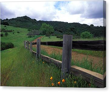 Fence And Poppies Canvas Print by Kathy Yates
