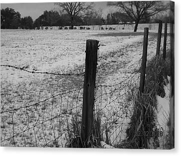 Fence And Snow Canvas Print by Floyd Smith