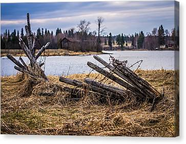 Canvas Print featuring the photograph Fence In A Haystack by Matti Ollikainen