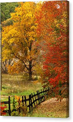 Fence In Autumn Canvas Print by Randall Branham