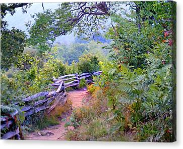 Fence To The Blueberries Filtered Canvas Print
