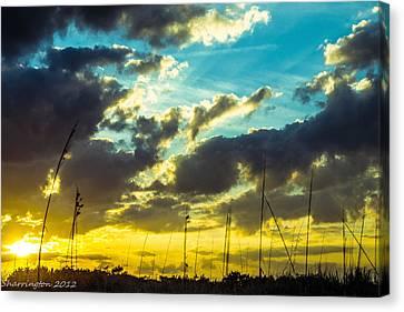 Canvas Print featuring the photograph Fernandina Beach by Shannon Harrington