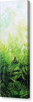 Ferns 3 Canvas Print by Hanne Lore Koehler