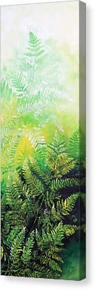 Ferns 5 Canvas Print by Hanne Lore Koehler