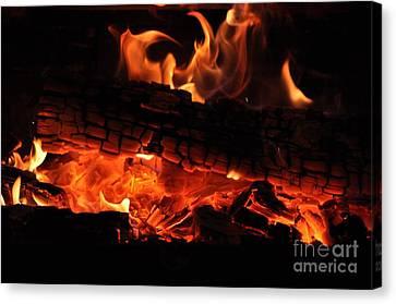 feu Canvas Print