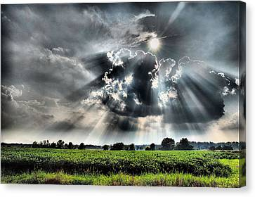 Field Of Beams Canvas Print