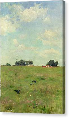 Field With Trees And Sky Canvas Print by Walter Frederick Osborne
