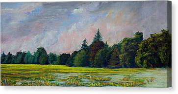 Fields Mid-storm Canvas Print by Peter Jackson