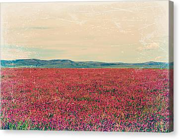 Fields Of Heaven Canvas Print by Leanna Lomanski