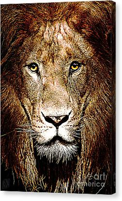 Fiercely Captivating Canvas Print by The DigArtisT