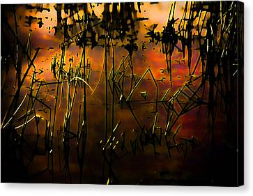 Fiery Abstract Canvas Print by Bonnie Bruno