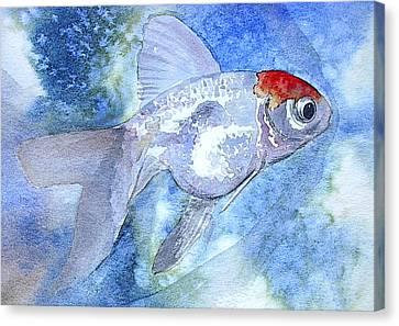 Fillet Canvas Print by J Vincent Scarpace