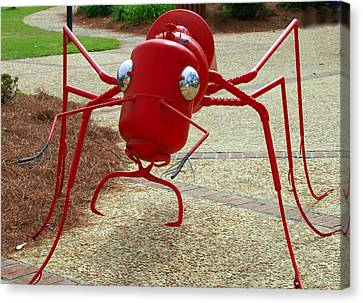 Fire Ant Art Canvas Print by Danny Jones