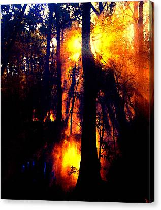 Fire In The Morning Canvas Print by David Lee Thompson