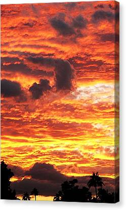 Fire In The Sky Canvas Print by Louise Mingua