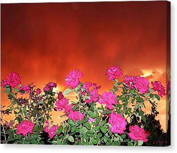 Canvas Print featuring the photograph Firery Roses by Wendy McKennon