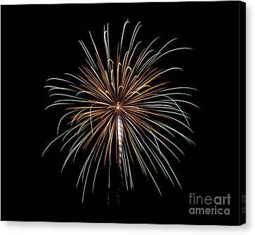 Canvas Print featuring the photograph Fireworks 10 by Mark Dodd