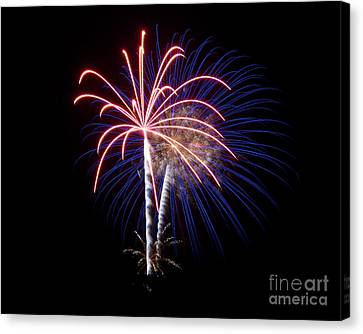 Canvas Print featuring the photograph Fireworks 12 by Mark Dodd