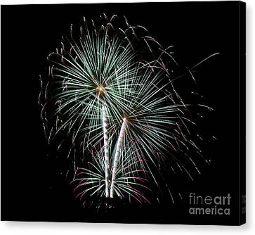 Canvas Print featuring the photograph Fireworks 8 by Mark Dodd