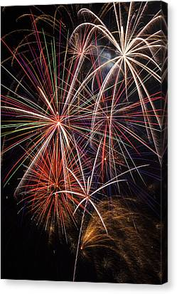 Pyrotechnic Canvas Print - Fireworks Display by Garry Gay