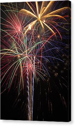 Fireworks In Celebration  Canvas Print by Garry Gay
