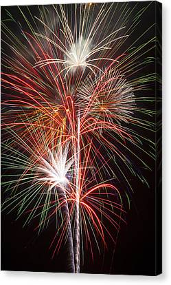 Fireworks Light Up The Night Canvas Print by Garry Gay