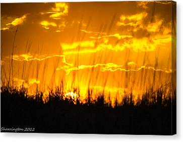Canvas Print featuring the photograph Firey Sunset by Shannon Harrington