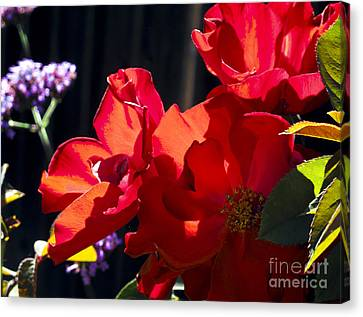 Canvas Print featuring the photograph First Blooms by Leslie Hunziker