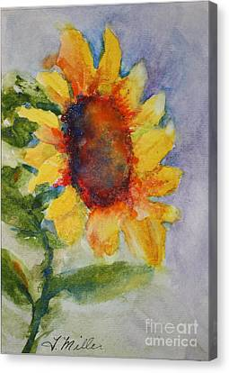 First Sunflower Canvas Print by Terri Maddin-Miller