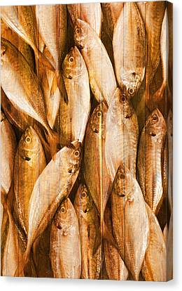 Fish Pattern On Wood Canvas Print by Setsiri Silapasuwanchai