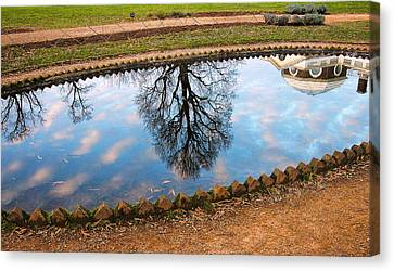 Fish Pond II Canvas Print by Steven Ainsworth