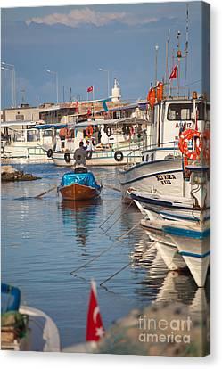 Fisherman At Yumurtalik Canvas Print by Gabriela Insuratelu