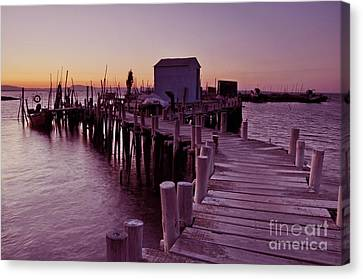 Fisherman's House Canvas Print by Armando Carlos Ferreira Palhau
