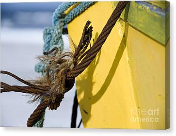 Canvas Print featuring the photograph Fishermens' Knot by Agnieszka Kubica