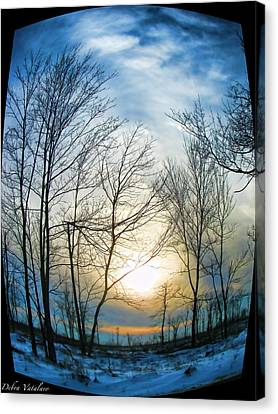 Fisheye Winter Landscape Canvas Print by Debra     Vatalaro