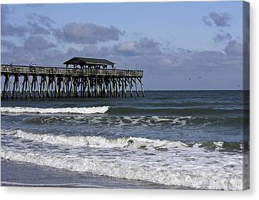 South Carolina State Bird Canvas Print - Fishing On The Pier by Teresa Mucha